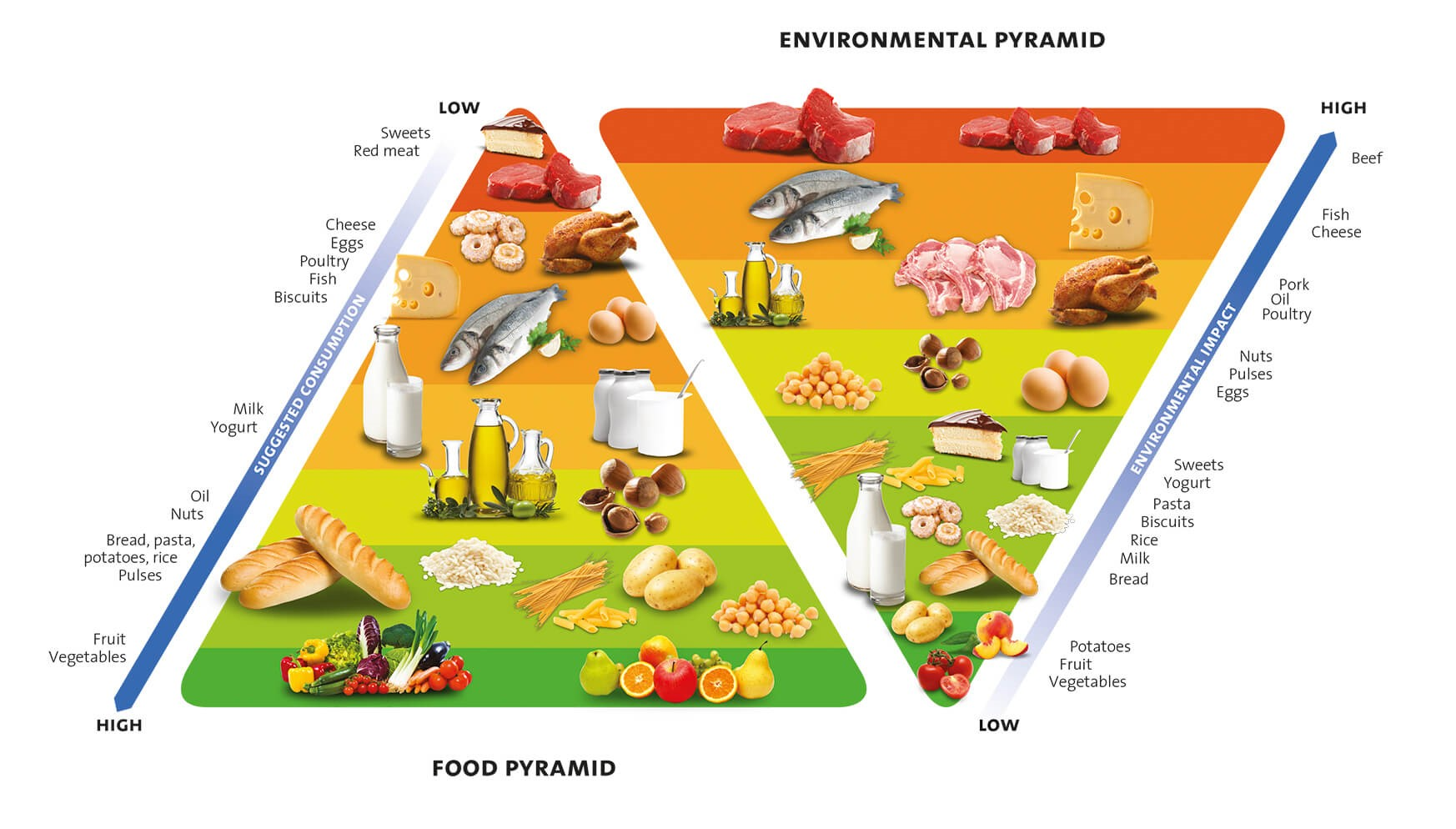 food pyramid barilla center for food & nutrion 2015.jpg